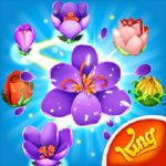 Blossom Blast Saga apk Download